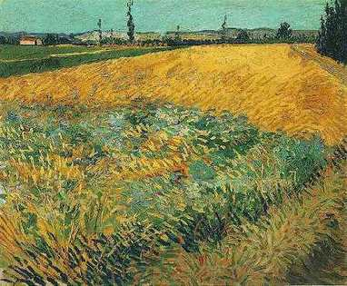 Vincentvangogh2371